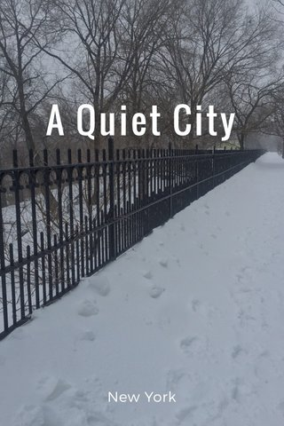 A Quiet City New York