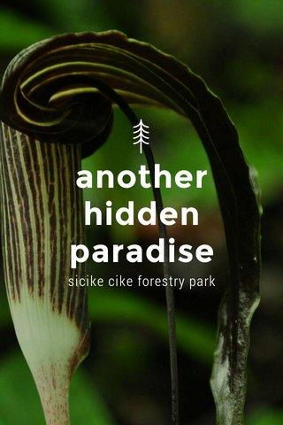 another hidden paradise sicike cike forestry park