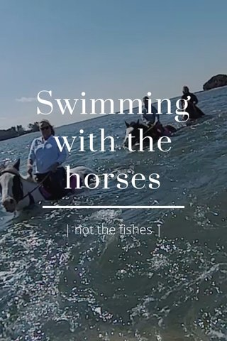 Swimming with the horses | not the fishes |