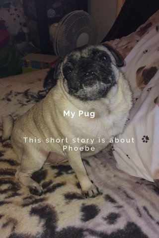 My Pug This short story is about Phoebe