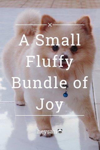 A Small Fluffy Bundle of Joy heysari🐼