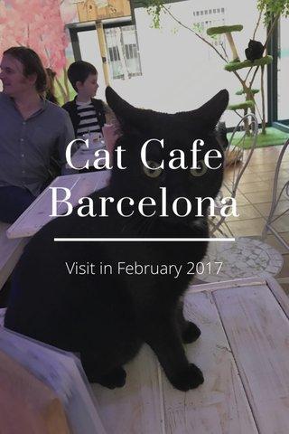 Cat Cafe Barcelona Visit in February 2017