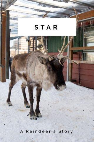 STAR A Reindeer's Story