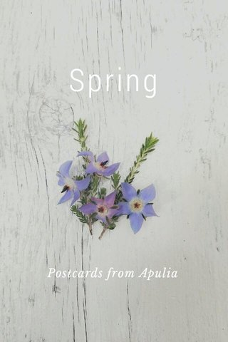 Spring Postcards from Apulia