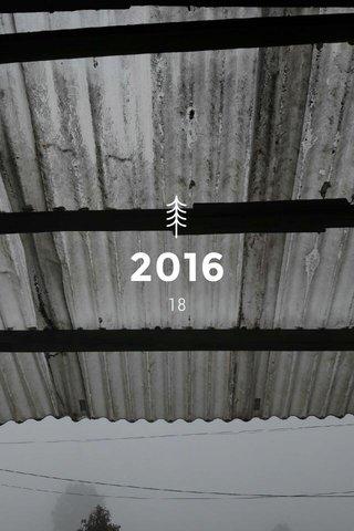 2016 18