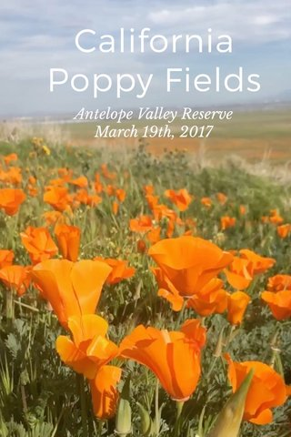 California Poppy Fields Antelope Valley Reserve March 19th, 2017