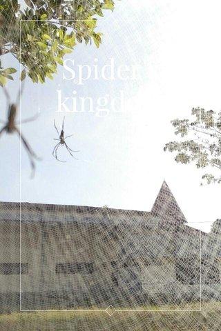 Spider's kingdom