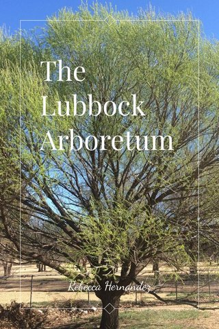 The Lubbock Arboretum Rebecca Hernandez