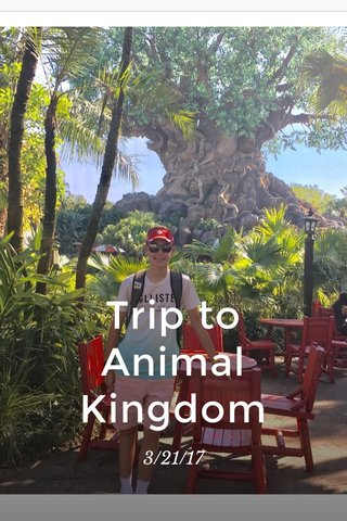 Trip to Animal Kingdom 3/21/17