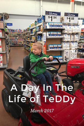 A Day In The Life of TeDDy March 2017