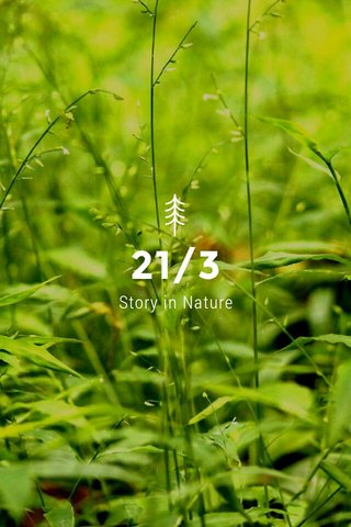 21/3 Story in Nature