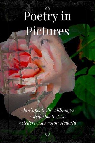 Poetry in Pictures #brainpoetrylll #lllimages #stellerpoetryLLL #stellerverses #storystellerlll