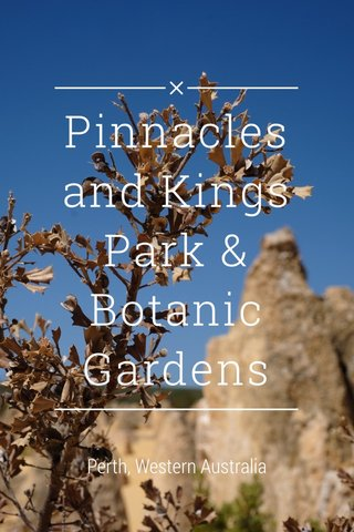 Pinnacles and Kings Park & Botanic Gardens Perth, Western Australia