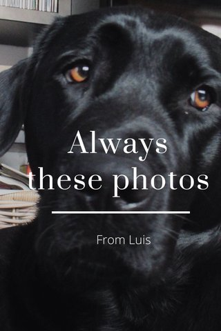 Always these photos From Luis