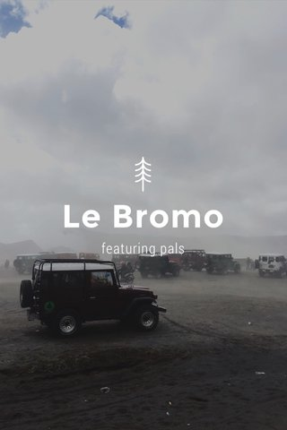 Le Bromo featuring pals