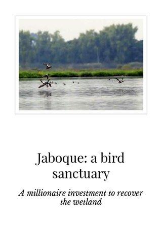 Jaboque: a bird sanctuary