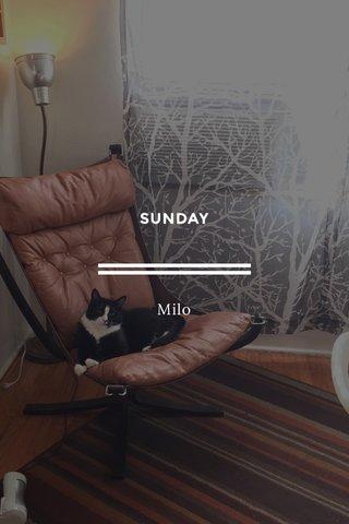 SUNDAY Milo