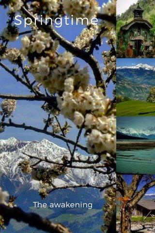 Springtime The awakening