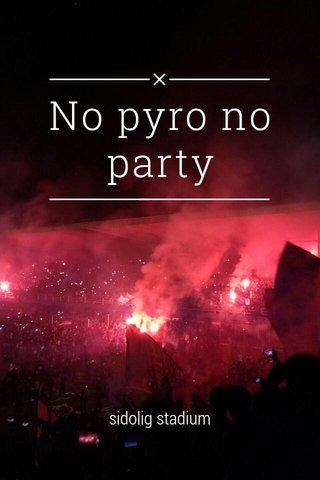 No pyro no party sidolig stadium