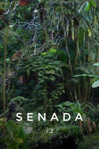 SENADA V.2