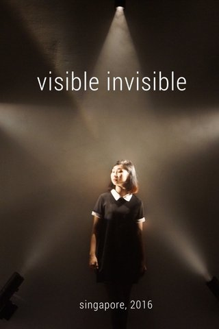 visible invisible singapore, 2016