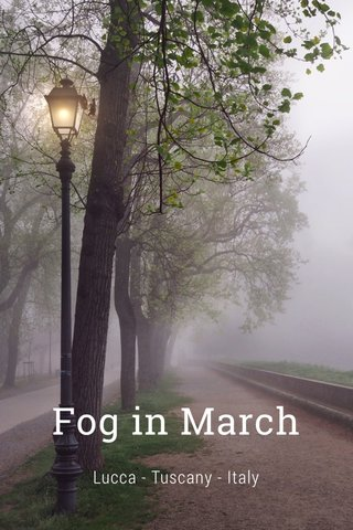 Fog in March Lucca - Tuscany - Italy
