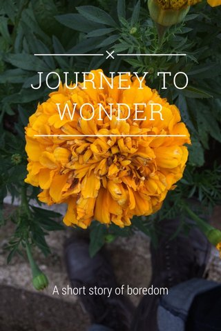 JOURNEY TO WONDER A short story of boredom