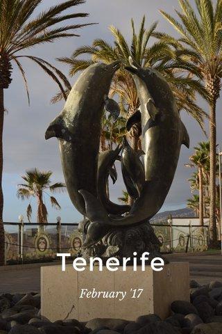Tenerife February '17