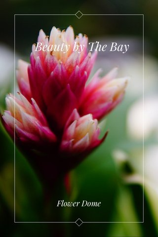 Beauty by The Bay Flower Dome