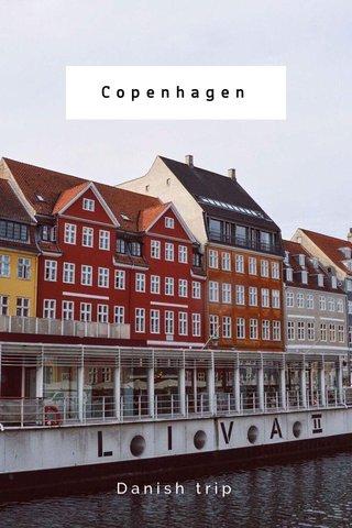 Copenhagen Danish trip