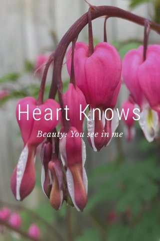 Heart Knows Beauty: You see in me