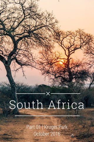 South Africa Part 01 | Kruger Park October 2016