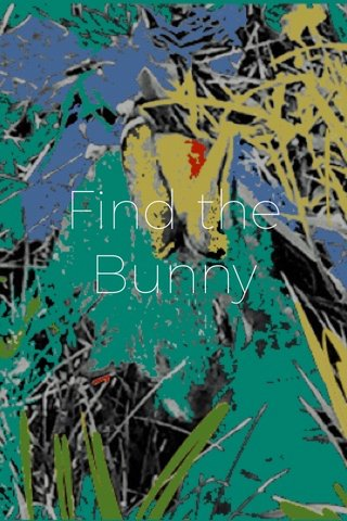 Find the Bunny