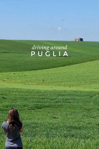 PUGLIA driving around