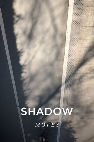SHADOW MOVES