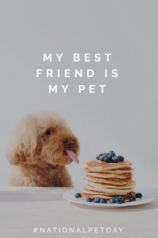 MY BEST FRIEND IS MY PET #NATIONALPETDAY