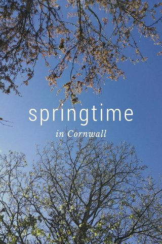 springtime in Cornwall