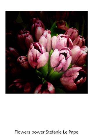 Flowers power Stefanie Le Pape