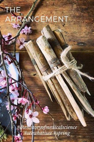 THE ARRANGEMENT #thehistoryofmedicalscience #seewhatisee #spring