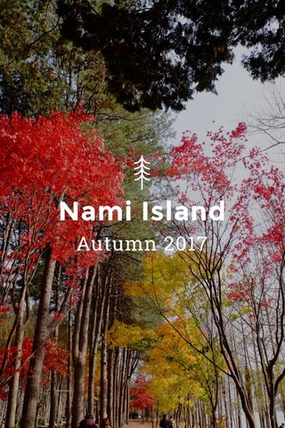 Nami Island Autumn 2017