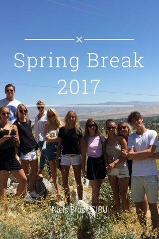 Spring Break 2017 Niels Brock CIBU
