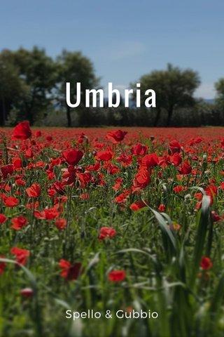 Umbria Spello & Gubbio