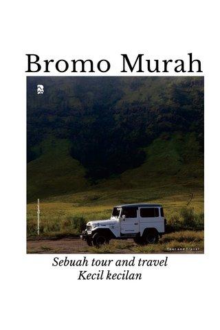 Bromo Murah Sebuah tour and travel Kecil kecilan