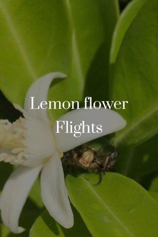 Lemon flower Flights