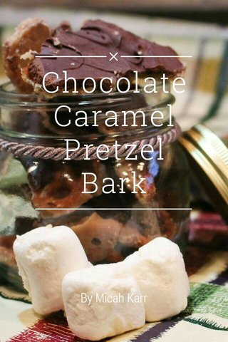 Chocolate Caramel Pretzel Bark By Micah Karr