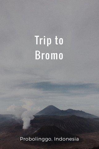 Trip to Bromo Probolinggo, Indonesia