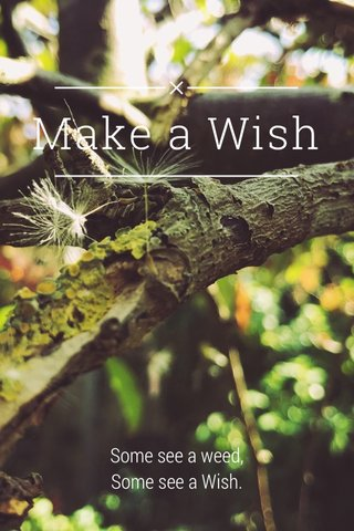 Make a Wish Some see a weed, Some see a Wish.