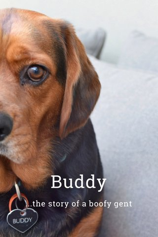 Buddy ...the story of a boofy gent