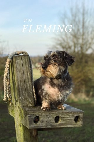 FLEMING the
