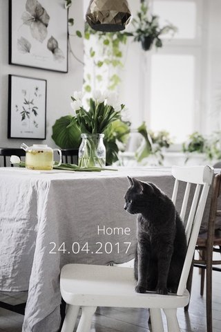 24.04.2017 Home